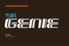 SB Genie example image 3