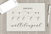clover script example image 12