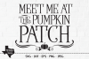 Pumpkin Patch SVG, Cut File, Fall Shirt Design, Thanksgiving example image 1