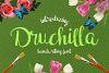 Druchilla Script example image 1