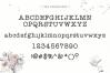 Effortless - A Typewriter Font example image 9