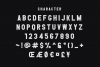 THE BLOCKERS 5 Fonts Family example image 12
