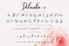 Delandia Script example image 11