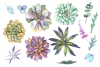 Watercolor Succulent Garden Clip Art Set example image 2