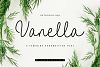 Vanella example image 1
