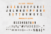Broscoi - Vintage Font Family - Free font demo link included example image 3