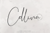 Cellina example image 1