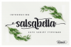 Salsabella Cute Script example image 1