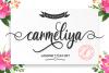 Carmeliya example image 1