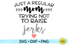 Just A Regular Mom Trying Not To Raise Jerks SVG DXF PNG example image 1