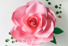 Giant Paper Rose Templates, Bundle of 4 example image 3