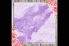 30 Ombre Pastel Lavender Watercolor Painted Digital Papers example image 2