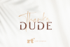 Diora Sunbright Font Duo example image 17