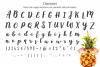 Baby Pineapples - A Sweet and Sassy Script font example image 11