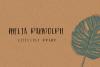 Azusa Sans Font Trio example image 8