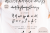 Glorious Font Duo Extras example image 8