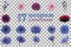 Cornflower watercolor clip art pack, bachelor's button example image 20