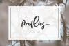 Bristle - Beautiful Font Script example image 5