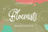 Bloemist Font example image 8