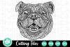 Zentangle English Bulldog - A Zentangle SVG Cut File example image 1
