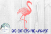 34 File Huge Mandala Animal SVG Cut File Bundle example image 14