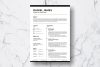 Resume Template Vol. 09 example image 2