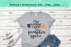 Funny My Blood Type Is Pumpkin Spice SVG Design example image 2