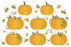 Fall Pumpkins Clip Art Set example image 3