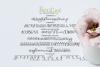 Beautype - Simple Script Font example image 10