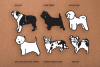Dog Shapes SVG - Dog Doodles for Cricut example image 2