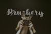 Brushery Font Duo example image 7