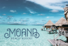 Oceania Display Font example image 7