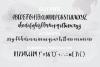 VIVIENE BOLD BRUSH Script .OTF Font example image 3