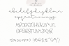 Gingerbread Cookies - A Script Font Duo example image 10