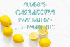 Lemons and Sugar- A Fun Hand-Written Mismatched Font example image 5