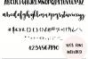 Castelo Script + 5 Branding Boards example image 7