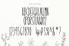 Dandy Dandelions - Handwritten Script & Print Font Duo example image 12