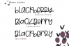 Blackberry - A Fun & Mismatched Font example image 4