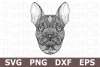 Zentangle French Bulldog - A Zentangle SVG Cut File example image 1