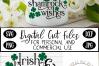 St Patrick's Day SVG, Irish Kisses and Shamrock Wishes SVG example image 3