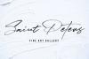 JV Signature SVG - Opentype SVG FONT example image 14