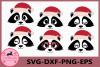 Raccoon Face SVG, Christmas svg, Raccoon Eyelashes Face example image 1