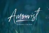 Amourist - Handwritten Font example image 1