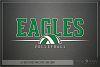 Eagle, Eagle volleyball, Team, logo, PRINT, CUT & DESIGN example image 5