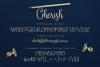 Cherish // Modern Script Font example image 5