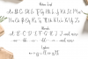 Hellena \ Font Duo with additional Ornament example image 6