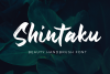 Shintaku - Handbrush Font - example image 1