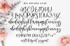 Delisha Script example image 13