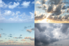 Vanilla Sky example image 8