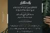 Letterally Handwritten Elegant Font example image 8